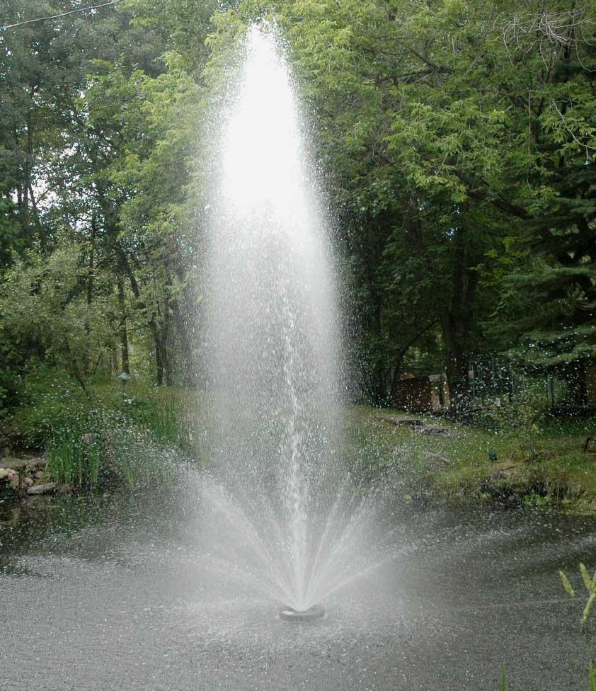 F & W Floating Fountain